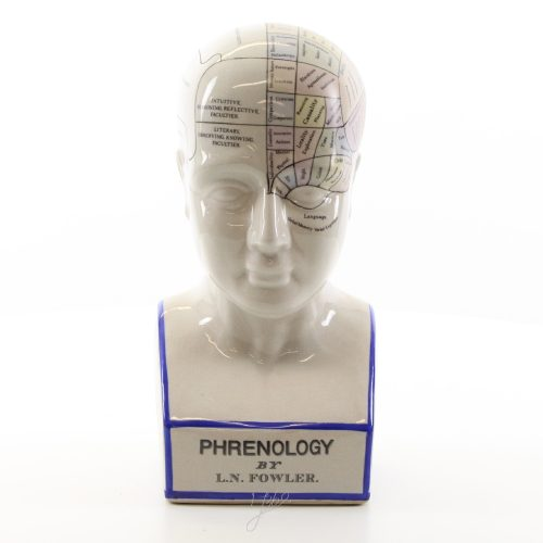 Frenologihuvud i porslin